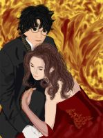 Harry and hermione by h-hr4ever