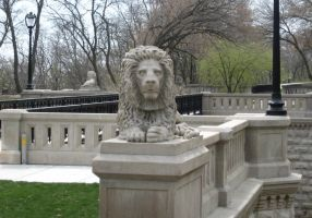 Lake Park Lion by WestytheTraveler