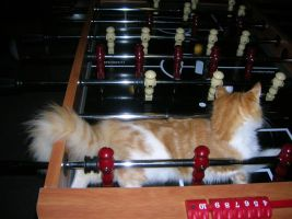 Raine Learns to Play Fooseball by openmeadow