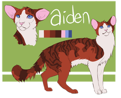 Aiden reference sheet by ClimbToTheStars
