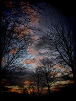 Sky is the limit by pagan-live-style