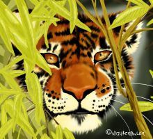 Crouching Tiger by internalflames