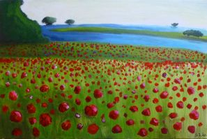 Poppy Field by StarlightsMarti