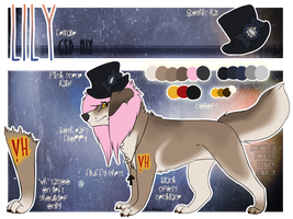 :P-CM: Lily Reference Sheet by Drodengera