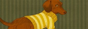 Doxie by 20handstall