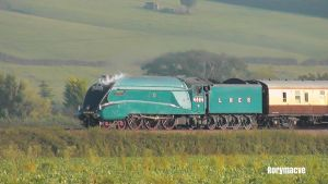 LNER 4464 'Bittern' at Stoke Canon by The-Transport-Guild