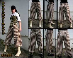 Steampirate Pants by Theriza