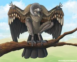 Harpy the Griffon Vulture by AltairSky