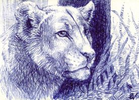 Hunter's Rest ACEO by Sulka