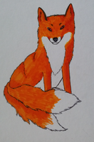 Foxi by AngelinTheHeart :3 by WeraHatake