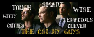 csi ny guys 2 by strawberrycooky