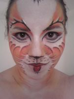Cats-makeup design by PlayhouseKat