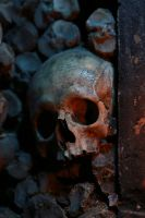 catacombe 5 by easycheuvreuille