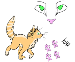 Warrior Cat Adopt {OPEN} by SNlCKERS