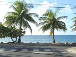 Scenic View in Puerto Rico by RicanWolf