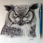 Owl Drawing by LethalChris