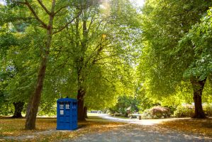 TARDIS in Chch 2 by BrielleCoppola