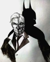 Two Face and Batman by BradAbdul