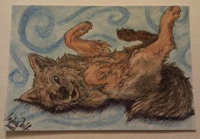 ACEO - Shadow by IndiWolfOnline
