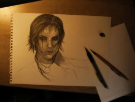 Tomb Raider WIP by emicathe
