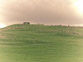 The Shepherd's Land.. 2 by Youcef07