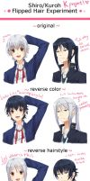 Shiro and Kuroh Flipped Hairstyles by mewe321