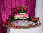Hot Pink B Day Cake by Yoxxy