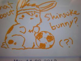 Nintendo Letterbox-What about Shinsuke bunny? by Tokkori