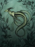 Gazeel by Evanira