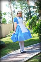 pleasantly alice by daisydaisydoom