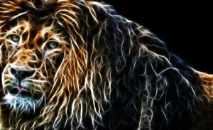 lion - fractal effect by Quiitschy