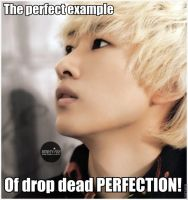 super junior macro41 by TwisterWithEunHae