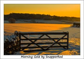 Morning Gold by SnapperRod