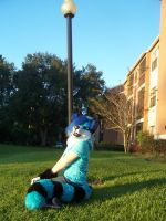 POLE! by AlieTheKitsune