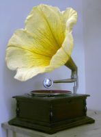 Phonograph Flower. Photoshop by FrozenPinky