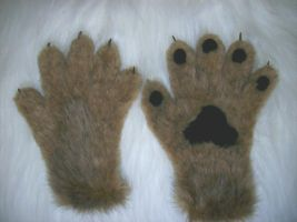 Coyote Paws by HoneyspydeR