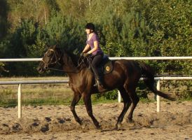 Stock 430: horse+rider gallop by AlzirrSwanheartStock
