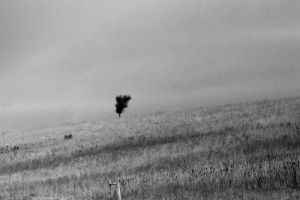 ALONE by dchon
