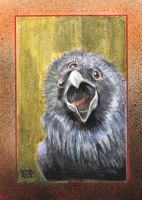 GAME OF THRONES SKETCH CARD - 3 EYED RAVEN by JASONS21