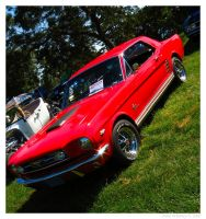 1966 Ford Mustang by Car-Crazy