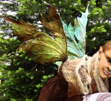 Unseelie pouka faery wings by S0WIL0
