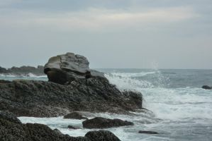 Little Mermaid Rock by VivianChi