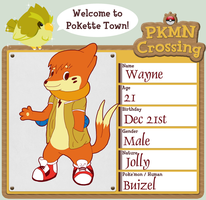 PKMN Crossing - Wayne by Threehorn