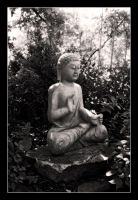 Buddah by dealived