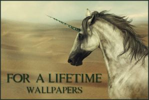 FaL: Wallpapers by romino4000