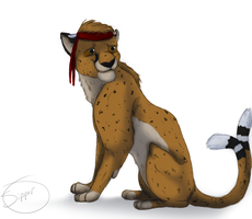 Timba by Sipper-Paws