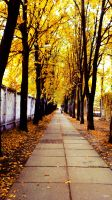 Beautiful Autumn by TrePoint