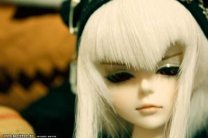 bjd by gertimon