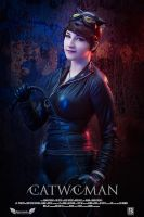 Catwoman -The Movie by Tenshiii3