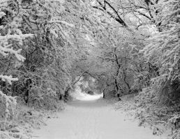 Winterwonderland by eline-w
